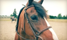 One, Two, or Four One-Hour Horseback-Riding Lessons at Lake Tapps Equiventures (Up to 62% Off)