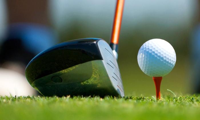 Matia Malagutti - Matia Malagutti: 5 o 10 lezioni di golf di un'ora ciascuna con maestro professionista da 29,90 €