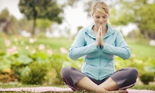$30 for 10 Yoga Classes at TriYoga Boston ($120 Value)