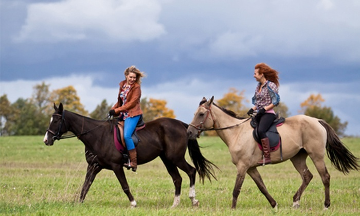 Adventure Horse Riding - Horse Riding Adventure: Riding Experience for Beginner or Intermediate Riders With Picnic at Horse Riding Adventure