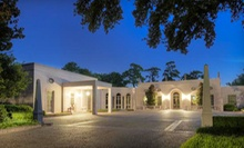 Twilight Tour or Day at Museum at Rienzi Museum of Fine Arts Houston (Up to Half Off). Five Options Available.