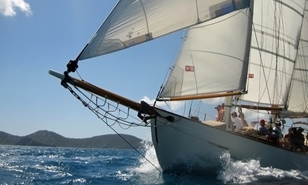 Eco Tour Cruise for Two or Four from Schooner Heron (Up to 51% Off)