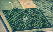 Hedge-Maze Experience for Two or Up to Five at The Berry Barn in June, July, or August (Half Off). 12 Options Available.