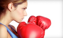 20 or 30 Classes at ICAT Academy of Boxing, Fitness, & Martial Arts (Up to 94% Off)