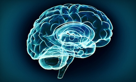 Brain-Fitness Training or Brain-Map Assessment at Santa Barbara Brain Fitness (75% Off)