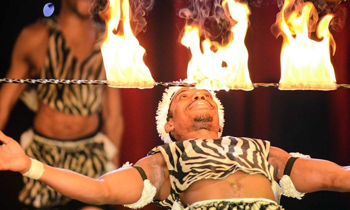 Gerry Cottles TURBO CIRCUS - Swindon: Gerry Cottle's Turbo Circus: Ticket for £9 (55% Off)