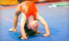 Two Months of Kids' Classes at 360 Gymnastics (Half Off). 10 Options Available.