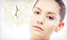 One, Two, or Three Seasonal Custom European Facials at Euro Med Spa (Up to 61% Off)