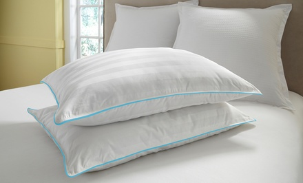 2-Pack of Memory-Foam Clustered 300-Thread-Count Cotton Pillows