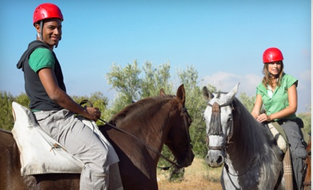 Two or Four 60-Minute Horseback-Riding Lessons at Newport Equestrian (Up to 59% Off)