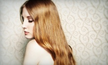 Haircut and Deep Conditioning with Option for Highlights or Color from Kiley Brougham at Swan & Company (Up to 64% Off)