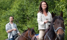 Trail Ride and Horseback-Riding Lesson for 2 or 4, or a Birthday Party for Up to 15 at Honey Poo Acres (Up to 70% Off)