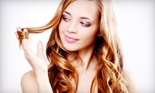Hair Packages with Color at Above It All Hair Design &amp; Spa (Up to 55% Off). Three Options Available. 