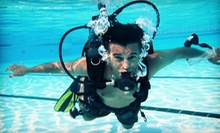 $20 for Discover Scuba Diving Course at Gigglin' Marlin Divers ($50 Value)