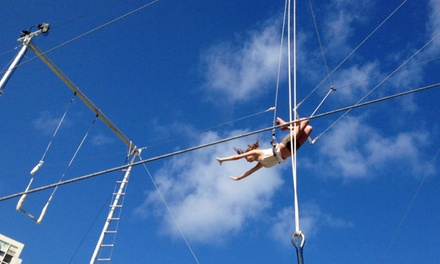 Two or Four Trapeze Classes, or a Private Trapeze Class for Up to 10 at Circus Experience (Up to 55% Off)