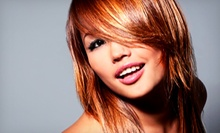 Cut and Conditioning with Option for All-Over Color or Full Foil Highlights at Shear Passion Hair Salon (Up to 57% Off)