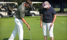Private Golf Lesson or One or Three Nine-Hole Golf Lessons from Bobby Steiner in Westerville (Up to 58% Off)