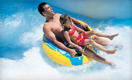 Two, Four, or Five All-Day Water-Park Visits at Surfari Joe's (Half Off)