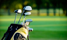 Half-Hour Full Swing or Putting Lesson with Half-Hour Practice Session at GolfEd (Up to 68% Off)