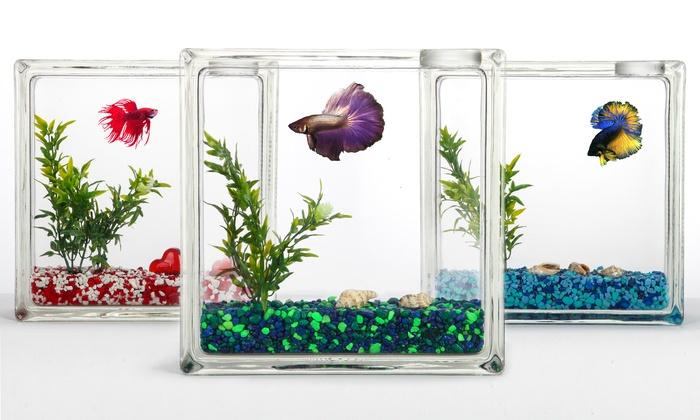 Aquablock fish tank groupon for Fish tank deals