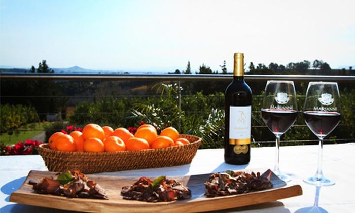 Marianne Wine Estate - Marianne Wine Estate: Biltong and Wine Pairing at Marianne Wine Estate