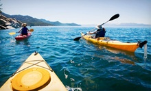 Reef Kayak Tour for Two or Two-Hour Guided Kayak Tour for Two, Four, or Six from Beach Town Tours (Up to 67% Off)