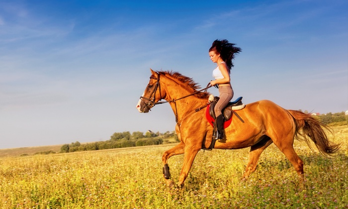 Circolo Ippico Acquasanta - Circolo Ippico Acqua Santa: 4 lezioni di equitazione con istruttore federale a 34,99 €