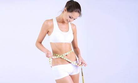 Ellegance — Gaia: 3 ou 6 sessões de tratamento corporal de criolipólise desde 49,90€