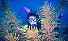 Discover Scuba Class with Diving Equipment for One or Two at Seven Seas (Up to 70% Off)