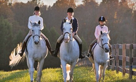 One or Four 60-Minute Horseback-Riding Lessons at Showcase Equestrian Center in Eads (Up to 56% Off)