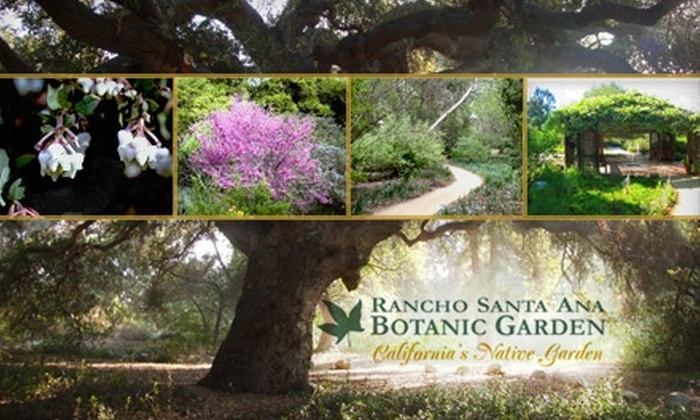 rancho santa ana botanic garden los angeles deal of the day groupon los angeles