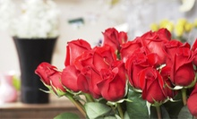 Floral Arrangements, Plants, and Gifts at All Occasions Flowers (Up to 53% Off). Two Options Available.