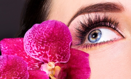 Three Eyebrow Waxes, Eyelash Extensions, or Eyebrow Wax and Eyelash Extensions at DeLuxe Salon (Up to 61% Off)