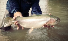 Introductory Fly-Fishing Class for Two or Four at Action Angler &amp; Outdoor Center in New Braunfels (Up to 55% Off)