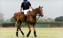 Two or Four Polo and Riding Lessons at The Dallas Polo Club (Up to 69% Off)