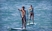 All-Day Paddleboard Rental for One or Two from MN Surf Co. (63% Off)