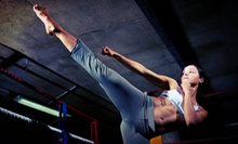 5, 10, or 20 Kickboxing Classes at Stone Gym (Up to 83% Off)