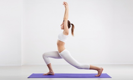 10 Hot-Yoga Classes or One Month of Unlimited Hot-Yoga Classes at Seattle Executive Fitness (Up to 82% Off)