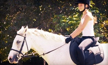 Three-Day Horseback-Riding Camp on July 17–19 for One or Two Kids at Palermo Show Stable (Up to 64% Off)