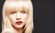 Haircut and Aveda Botanical Therapy Treatment with Optional Highlights or Color at Signature Image Salon (Up to 61% Off)