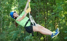 Treetop-Canopy Zipline Tour for Six, Four, or Two from Honeysuckle Hill Farm (Up to 53% Off)