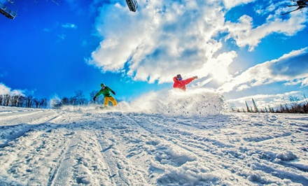 1-Night Stay in a Standard Room or Chalet with Two Lift Tickets at Treetops Resort in Gaylord, MI. Two Kids Stay Free.
