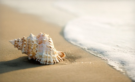 Shelling Trip for One, Two, or Four from Reel Kind Fishing (Up to 57% Off)