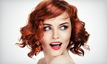 Haircut and Conditioning or Full Highlights with Optional Haircut and Blow-Dry at Tyler Presley Salon (Up to 63% Off)