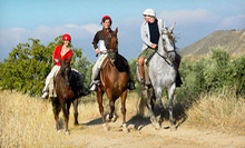 Historical Wine Tour for One or Two at Saddle Up Wine Tours (Up to 61% Off)