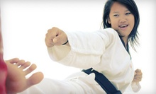 10 or 20 Classes at Edmonton Mixed Martial Arts (95% Off)