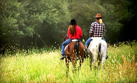 Two or Four 60-Minute Horseback-Riding Lessons at Horseplay Stables in Middleboro (Up to 67% Off)