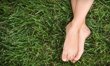 Two or Four 30-Minute Ion Detox Foot Sessions at Ivagio Laser Spa (Up to 69% Off)
