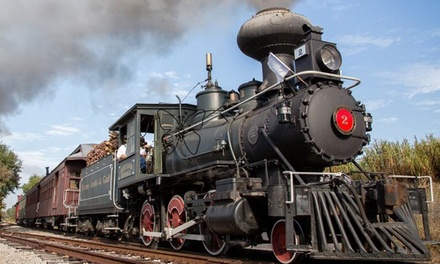 Steam or Diesel Train Ride for Two or Four with the Orange Blossom Cannonball (Up to 48% Off)