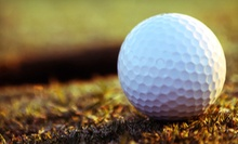 One Day of Unlimited Range Balls or 10 Small Buckets of Range Balls at The Range on Oak Grove (Up to 60% Off)